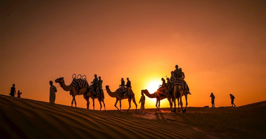 Paseo en Camello por el Desierto de Dubái